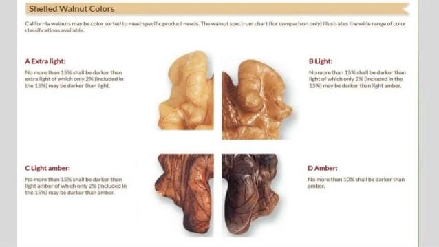 Walnut Color Chart