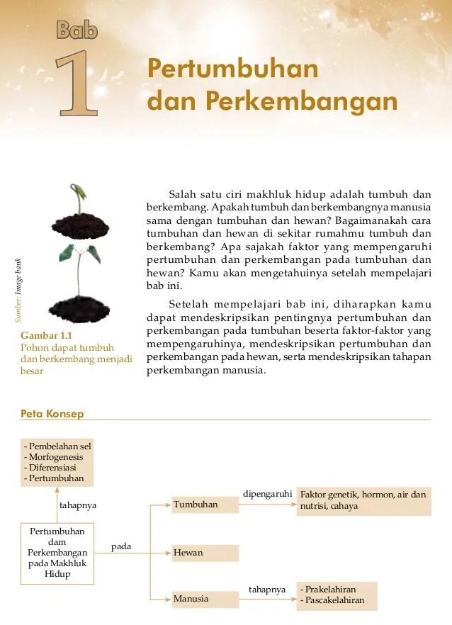 Ciri Ciri Pertumbuhan Dan Perkembangan Pada Tumbuhan : pertumbuhan, perkembangan, tumbuhan, Pertumbuhan, Perkembangan