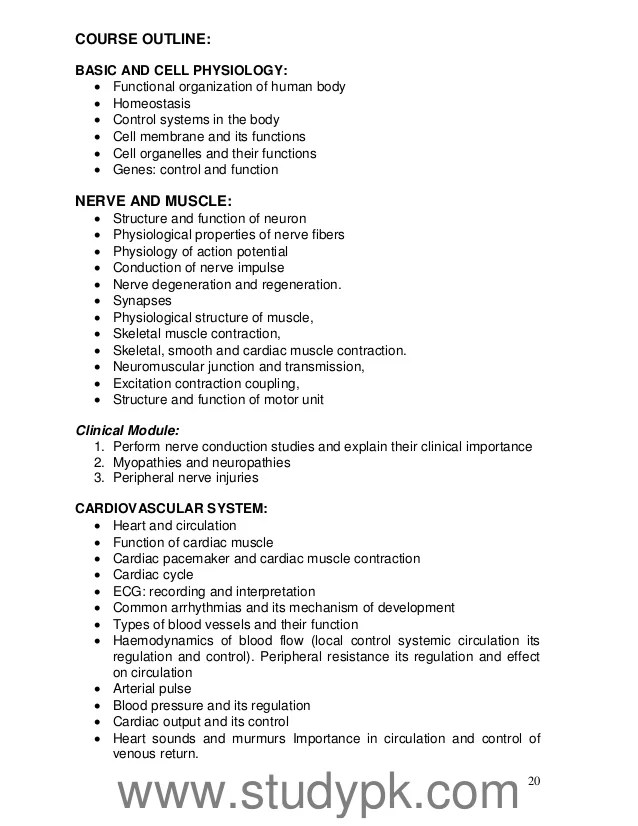 Physical Therapy Essay Physical Therapy Resume Sample Here Is A Nice
