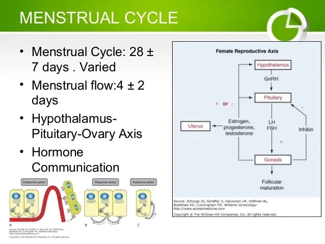 Physiology Of Menstrual Cycle Flow Chart Homeschoolingforfree