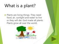 Plants powerpoint lesson