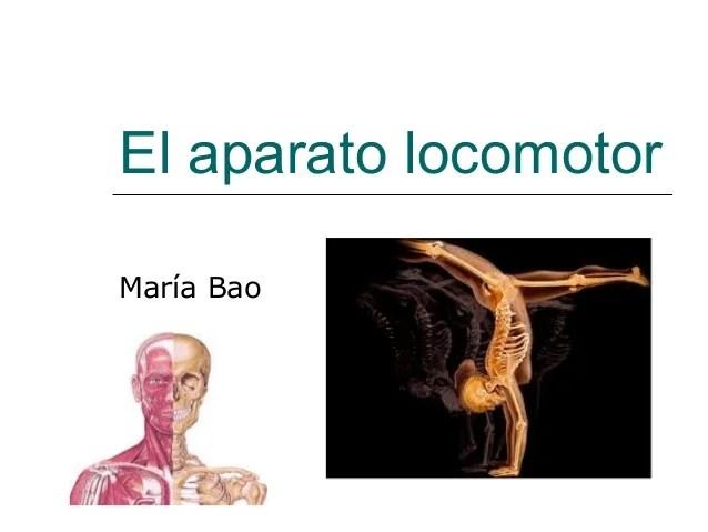 Bao De Maria Vidrio Curvo