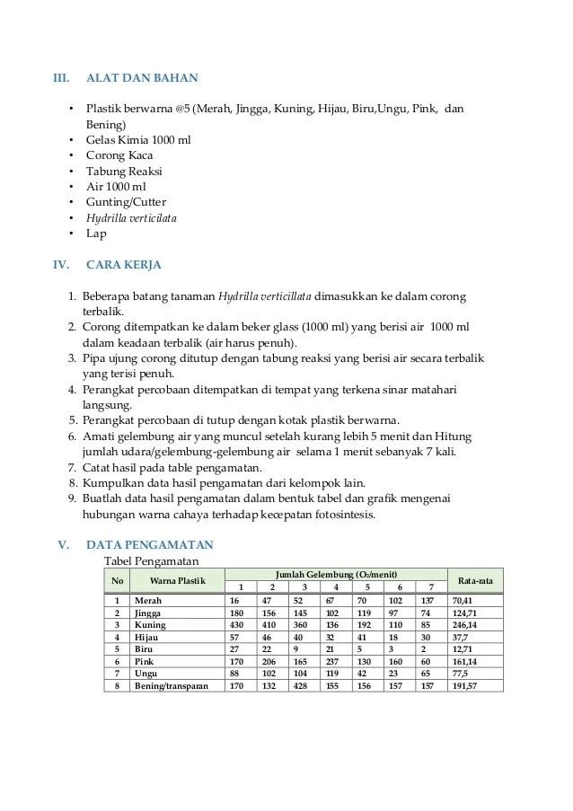 Laporan Praktikum Fotosintesis Ingenhousz Lengkap : laporan, praktikum, fotosintesis, ingenhousz, lengkap, Laporan, Praktikum, Fotosintesis, (Percobaan, Ingenhousz)
