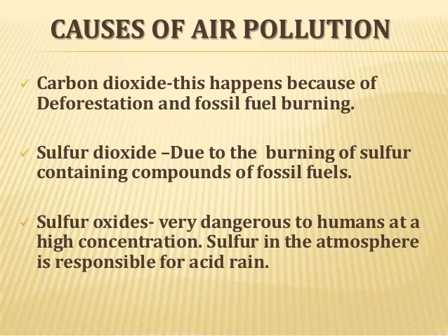 Air Pollution Research Papers Custom Paper Writing Service