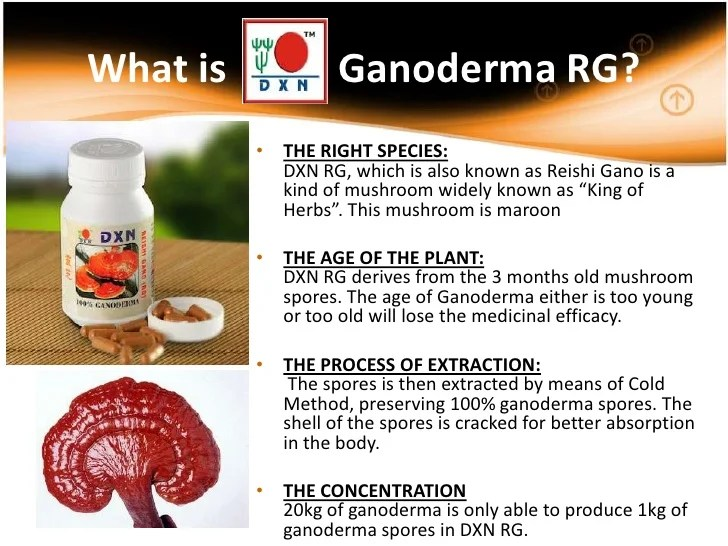 DXN RG 30 - Reishi gano - healthy food supplement with ...