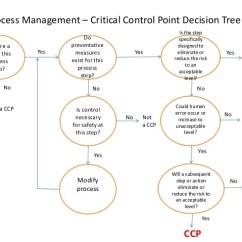 Powerpoint Decision Tree Diagram Organ Outline Process Management – Critical Control Point