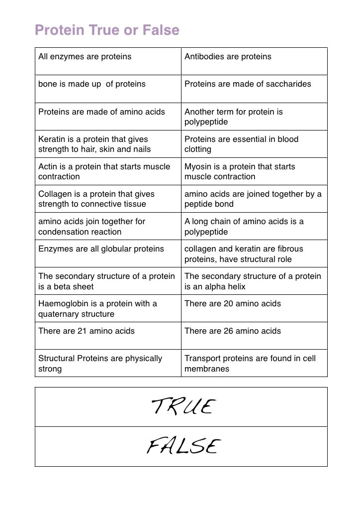 Protein True And False