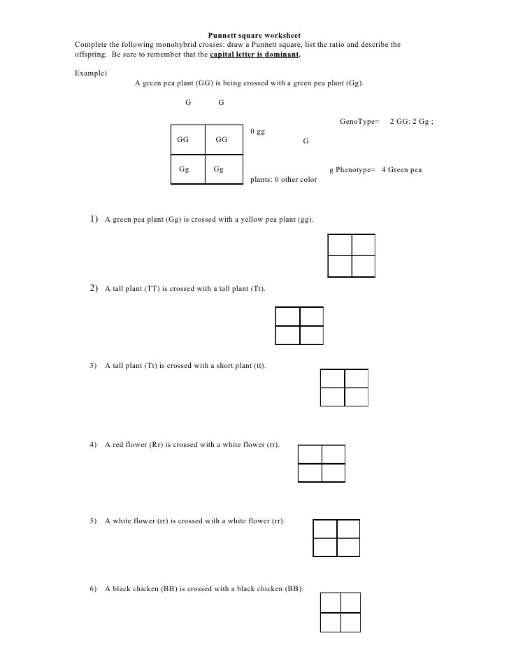 Pearson Square Worksheet 28 templates Pearson Square Worksheet – Pearson Square Worksheet