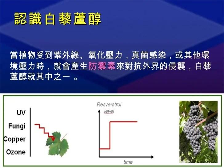白藜蘆醇粉末 產品說明(新資訊)