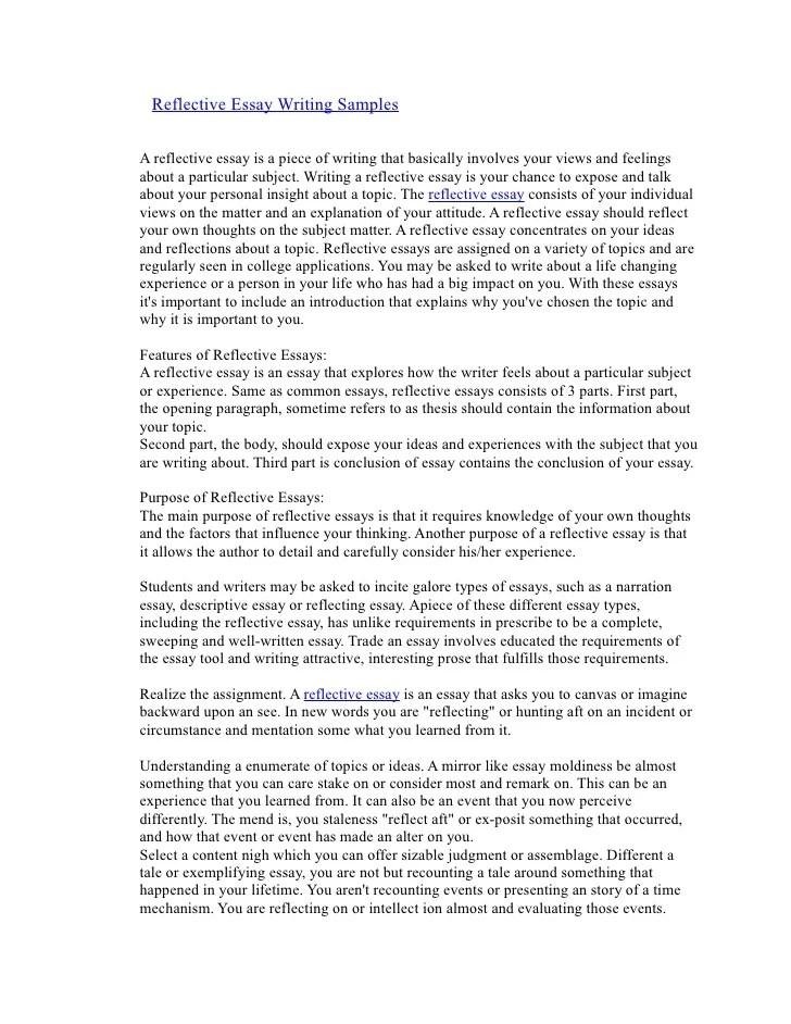 Insulfilm reflective essay