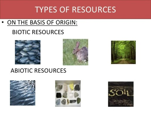 Image result for biotic and abiotic resources