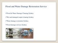 Water Damage Carpet Cleaning Sydney  Floor Matttroy