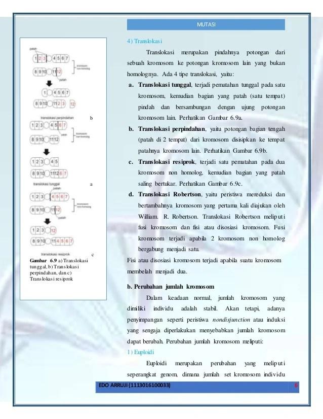 Translokasi Resiprok : translokasi, resiprok, Mutasi