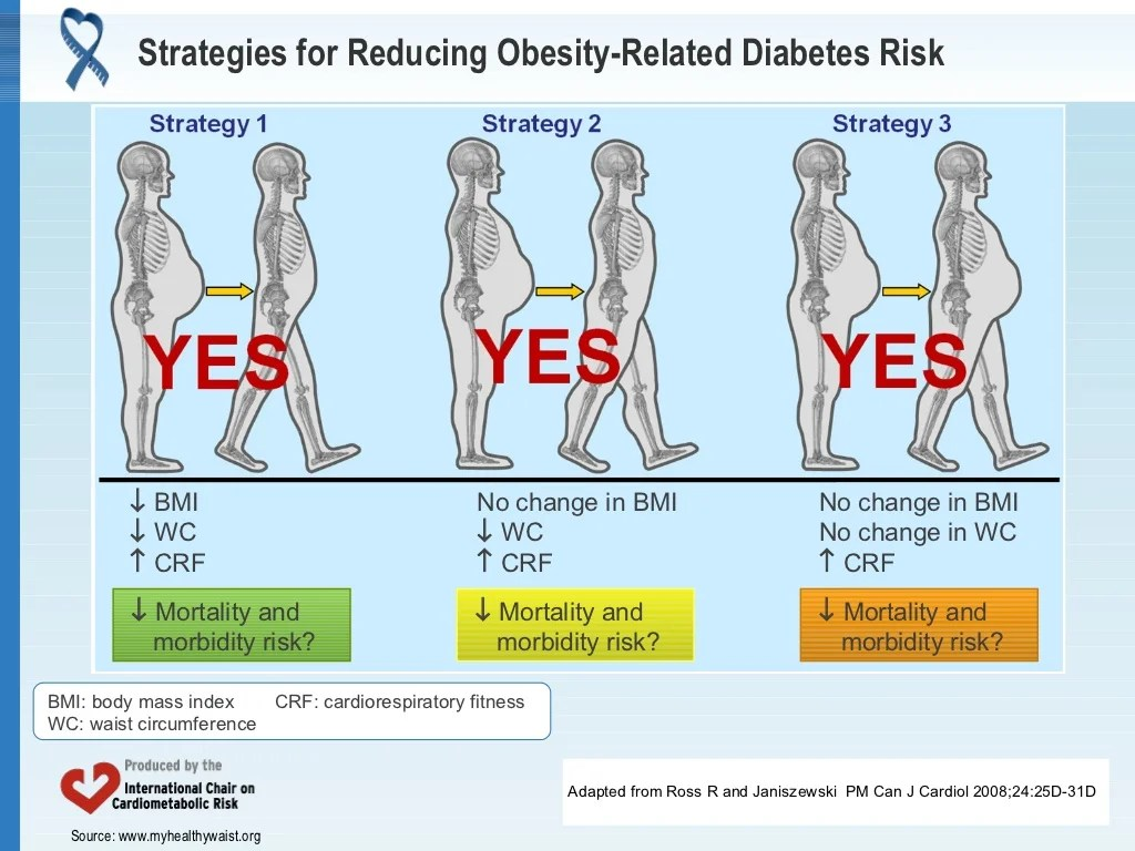 Strategies For Reducing Obesity Related Diabetes