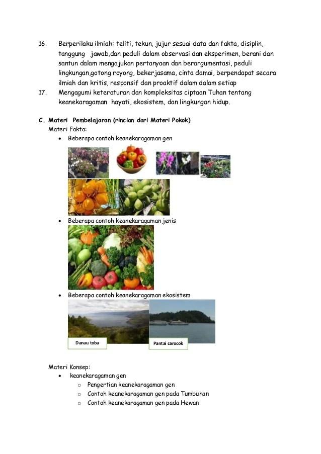 Contoh Keanekaragaman Jenis : contoh, keanekaragaman, jenis, Contoh, Keanekaragaman, Ekosistem, Indonesia, Surat