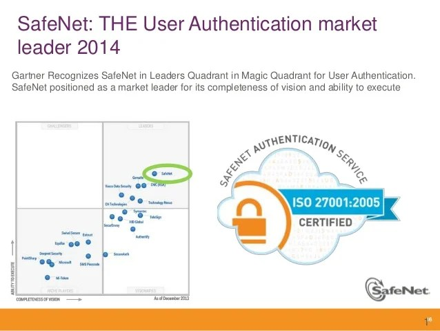 Safenet Overview 2014