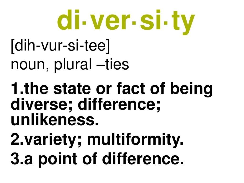 di·ver·si·ty [dih-vur-si-tee] noun, plural