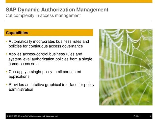 SAP Dynamic Authorization Management