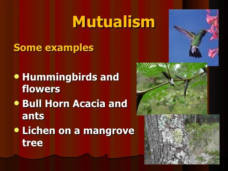 Science 9 Unit A Biological Diversity Section1 2 Lesson