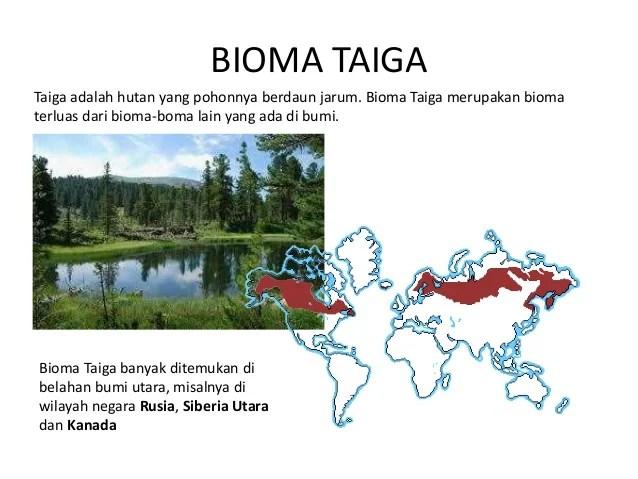 Gambar Biosfer Standar Kompetensi Dasar Tujuan