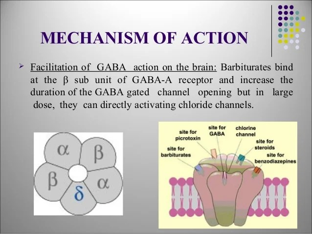 benzodiazepines mechanism of action
