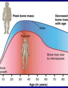 Shafei osteoporosis also bone density test results chart erkalnathandedecker rh