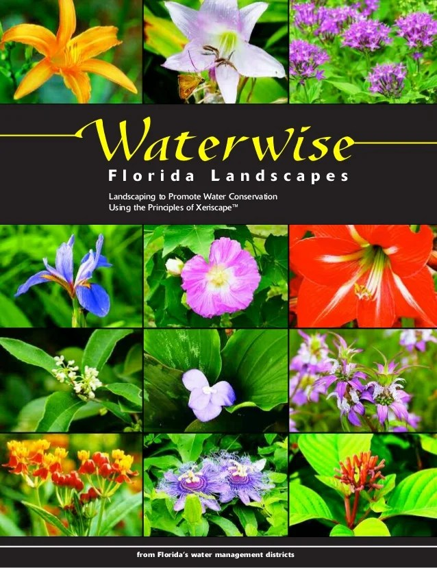 waterwise florida landscapes landscaping