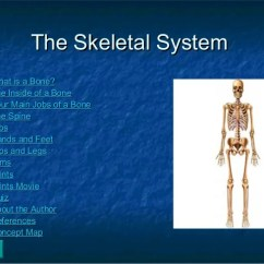 Concept Map Skeletal System Diagram Bpmn Conversation Whms Ppt The Systemthe 2