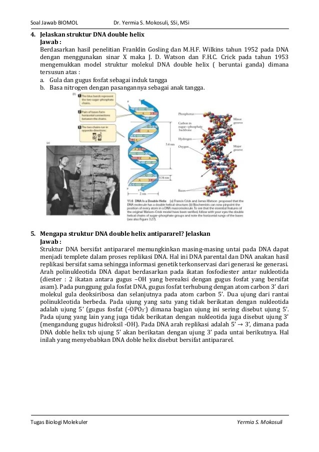 Jelaskan Struktur Double Helix Dna Menurut Watson Crick : jelaskan, struktur, double, helix, menurut, watson, crick, Jelaskan, Struktur, Double, Helix, Menurut, Watson, Crick, Berbagai