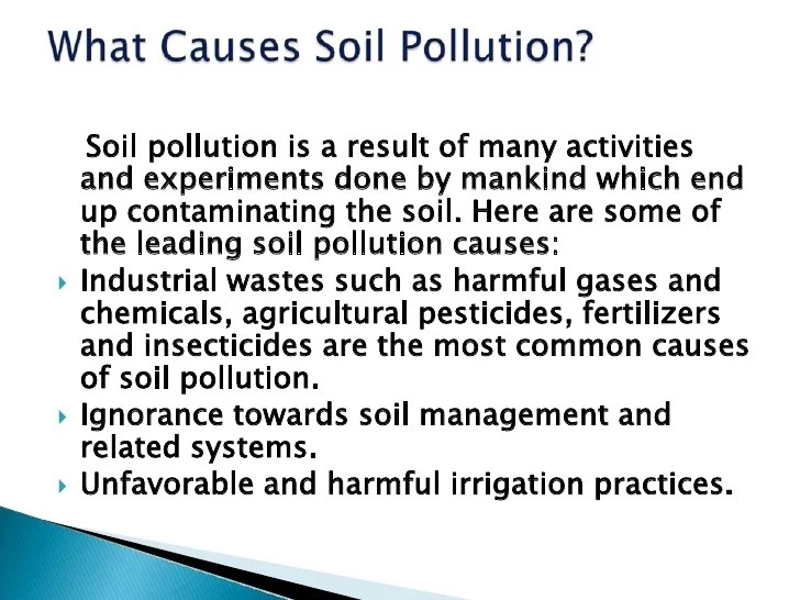 Soil Pollution Essay Soil Pollution Issue In Environmental Impact