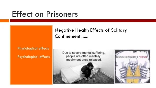 Psychological Effects Of Solitary Confinement Essay Custom Paper Service