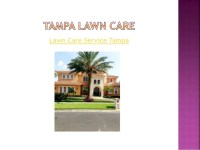 South Tampa landscaping & landscape lighting service