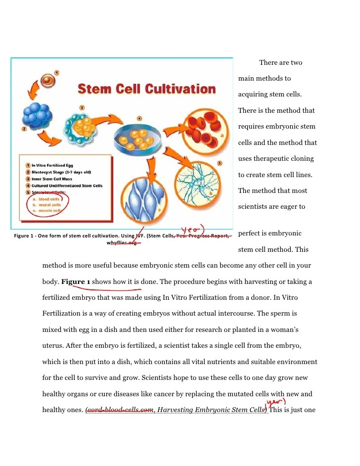 arguments against stem cell research