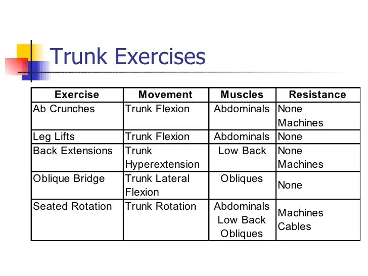 Lateral Trunk Exercises Flexion