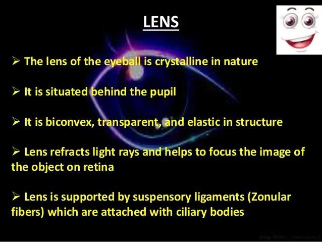 Anatomy of eye ppt