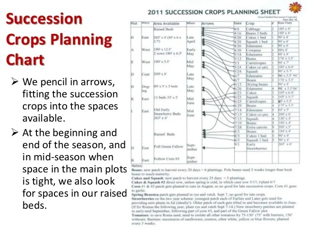 several approaches to succession also planting for continuous vegetable harvests pam dawlin  rh slideshare