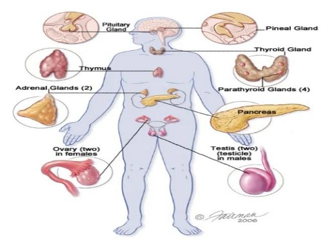 Tips on Diabetes & Back Pain