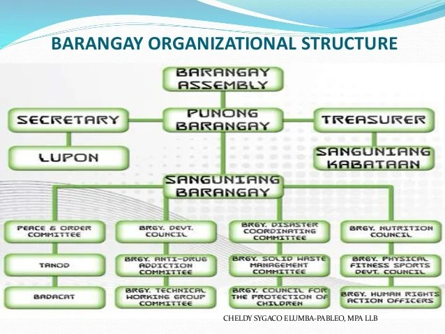 Barangay organizational also summary report on local government unit lgu rh slideshare