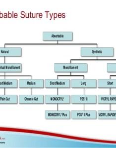 Suture size chart and needle technology also people davidjoel rh