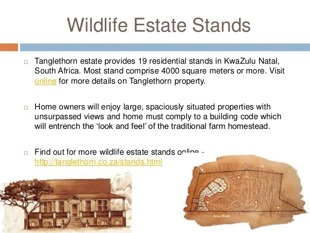 Wildlife estate kwazulu natal south africa  Tanglethorn