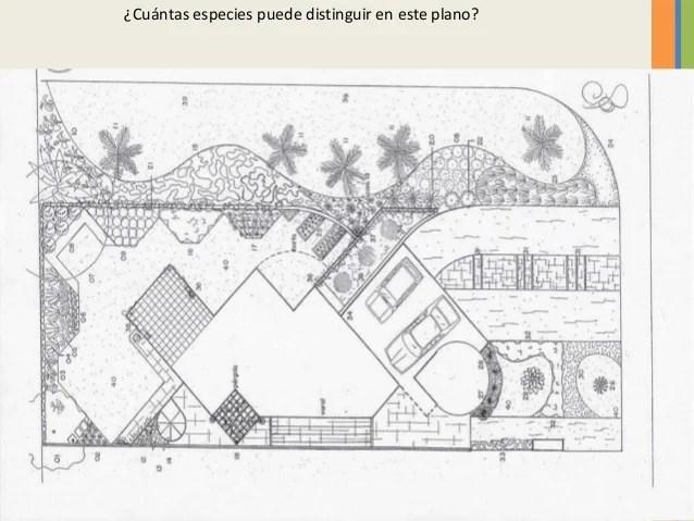 REPRESENTACIONES GRAFICAS EN DISEO DE JARDINES