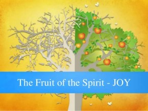 """Image result for THE FRUIT OF JOY"""""""