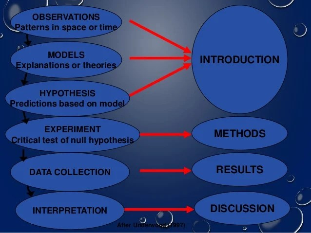 sample paper presentation