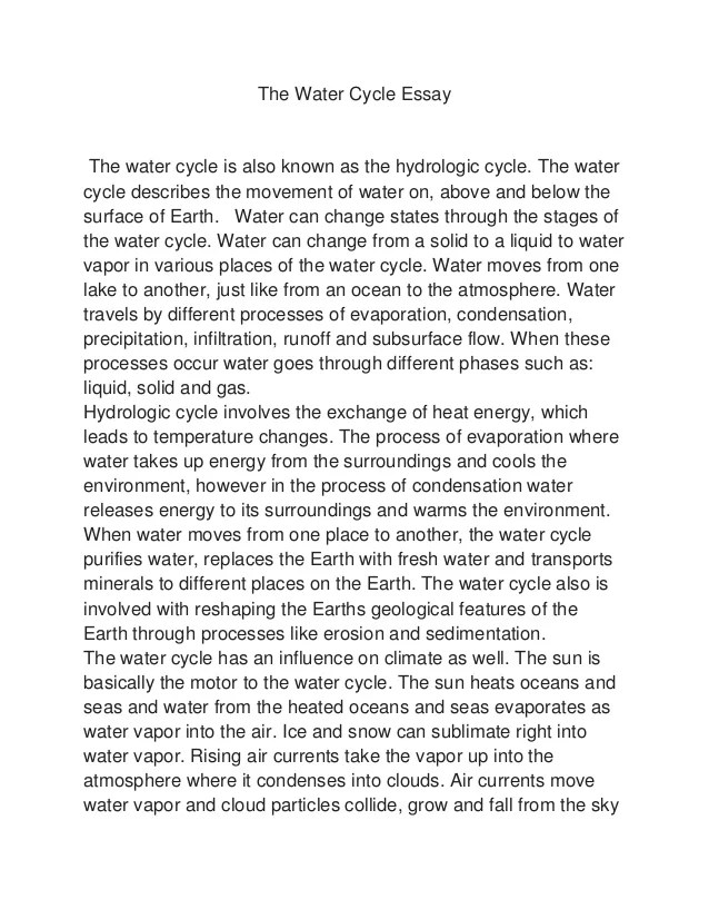 water pollution essay in simple english