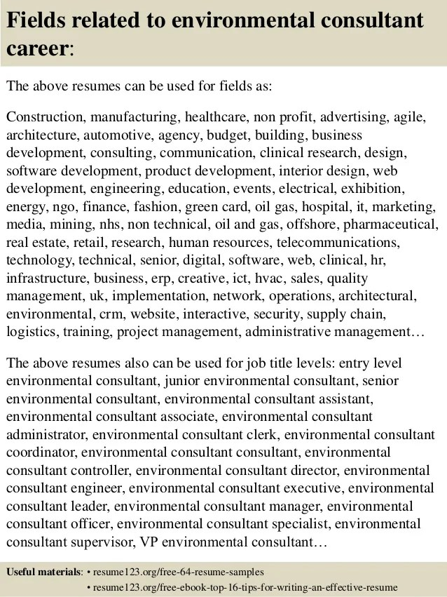 resume writing management consultant