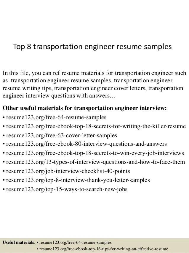 Traffic Assistant Sample Resume Professional Air Traffic