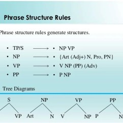 Sentence With Prepositional Phrase Diagram 2007 Holden Rodeo Radio Wiring Tree