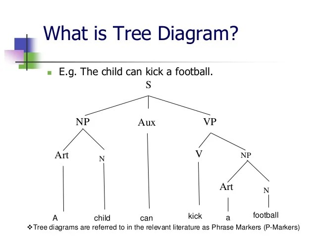 morphology tree diagram kubota generator wiring 6 what is