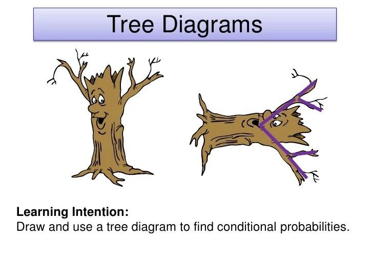 website that diagram sentences cat dissection muscles tree diagrams