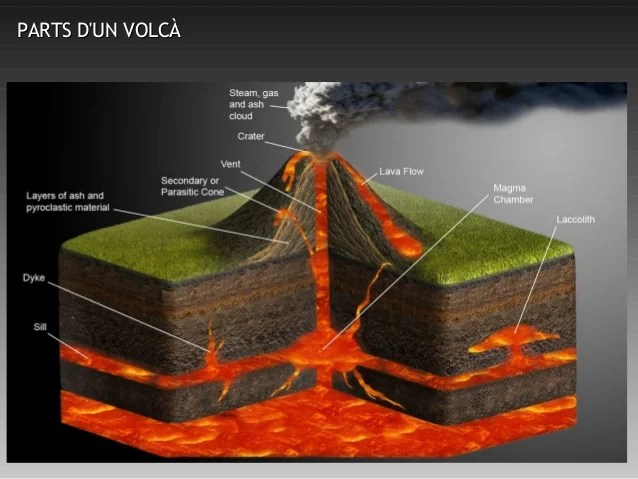 Pics Photos Shield Volcano Diagram Labeled Picture